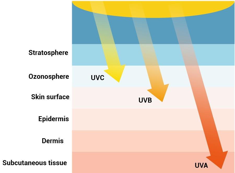 Oilyskinbeauty UV penetration