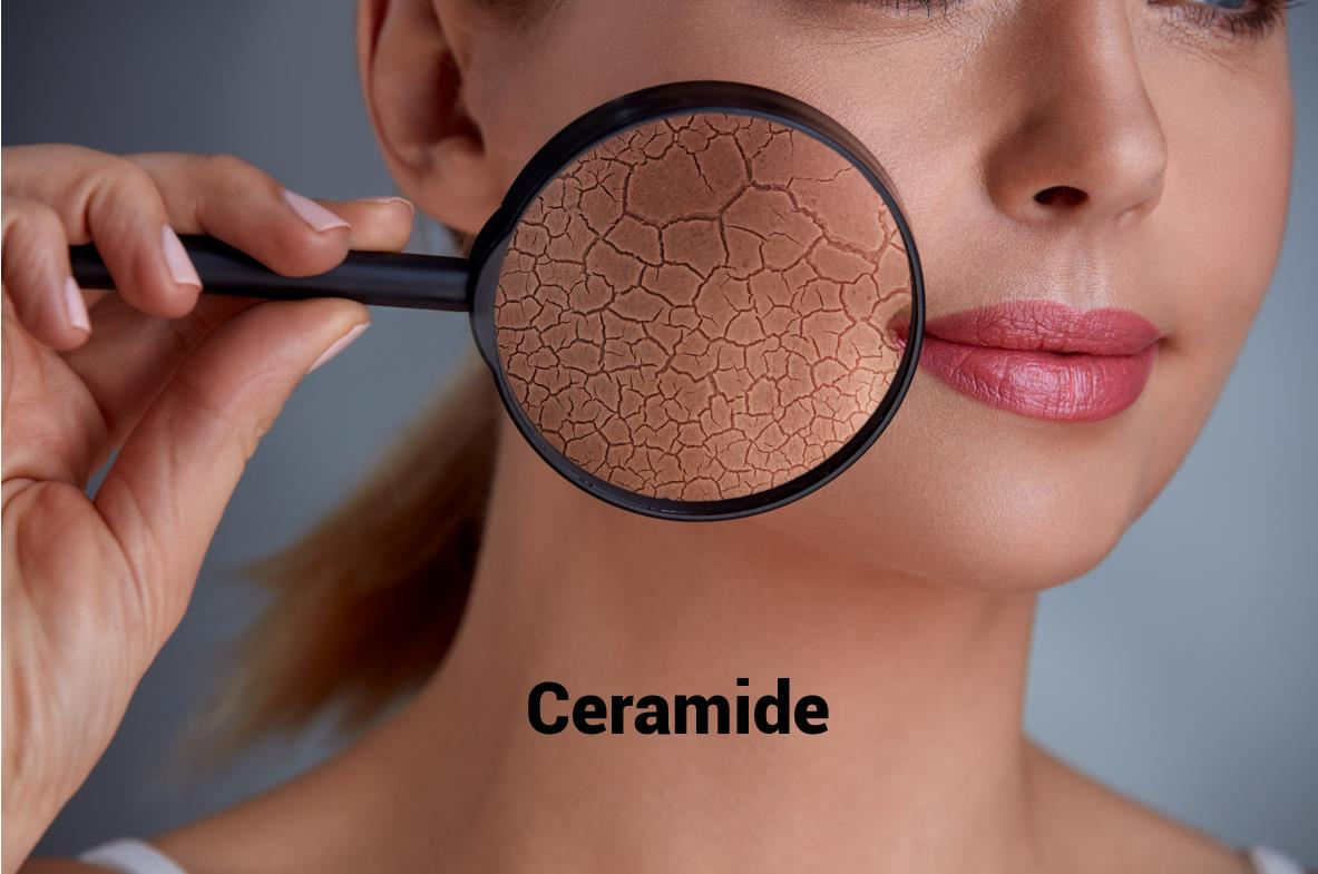 Lack of ceramide in the skin can cause skin damage and dry skin.
