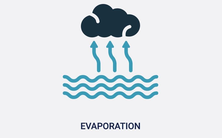 Oilyskinbeauty Evaporation of moisture on the skin surface