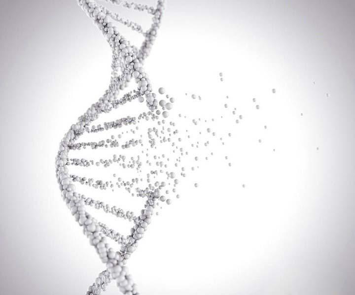 Oilyskinbeauty Protein that destroys bacteria