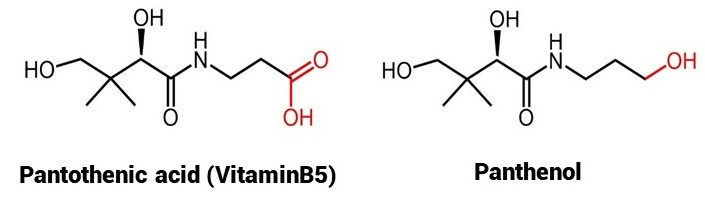 Oilyskinbeauty The chemical formula of vitamin B5 and panthenol