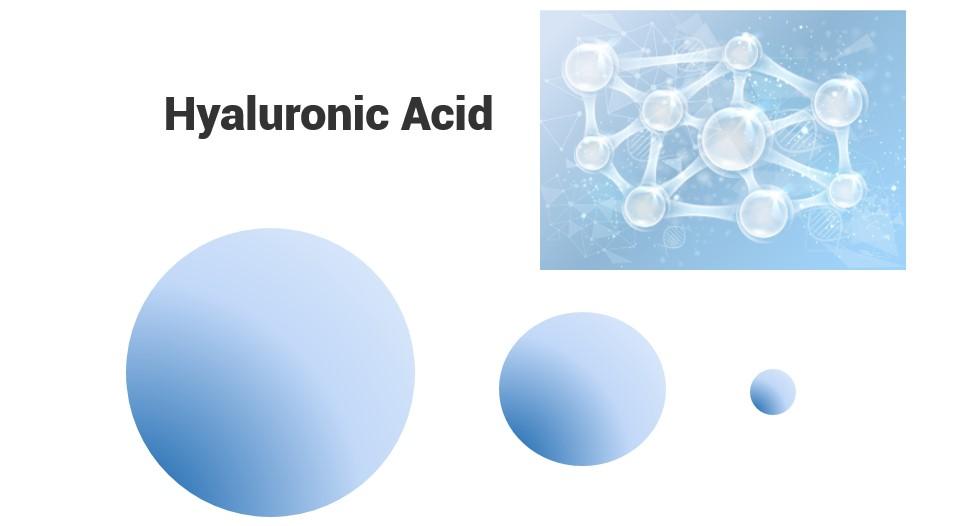 Hyaluronic Acid Profile