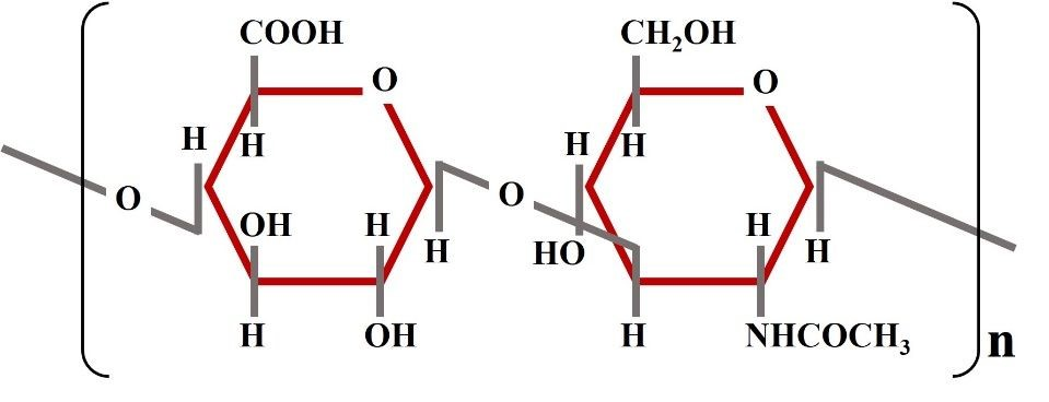Oilyskinbeauty The molecular structure of hyaluronic acid