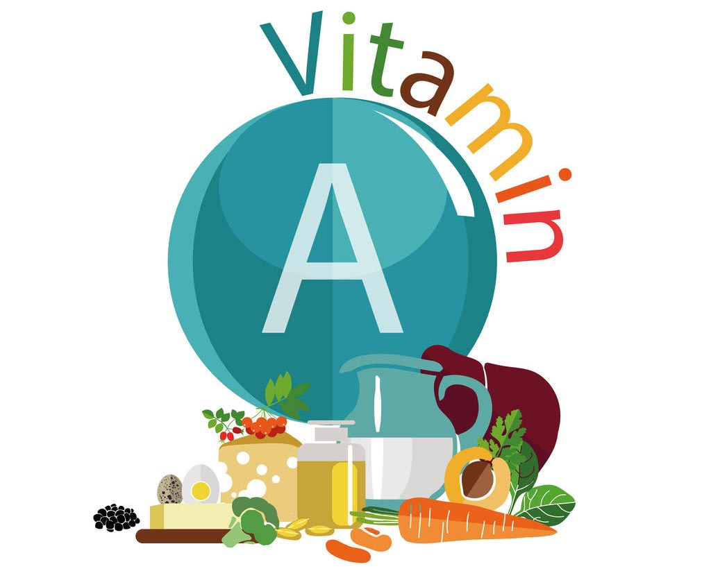 Vitamin A Profile. The cover of vitamin A contains many foods, such as carrots, eggs, grapes, pumpkins and so on.