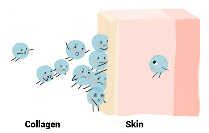 Oilyskinbeauty Collagen cannot enter deep into the skin