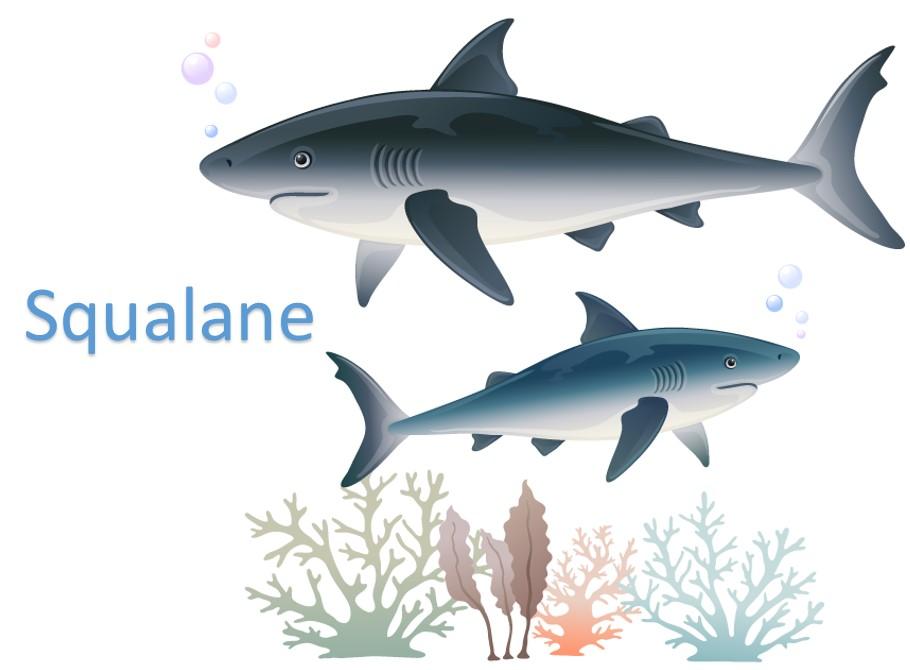 Squalane Profile